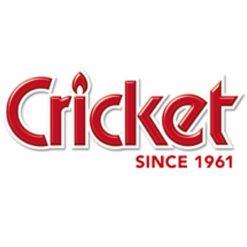 Αναπτήρες Cricket