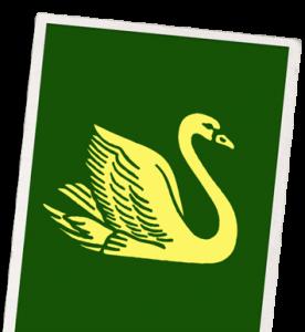 Η ιστορία της Swan