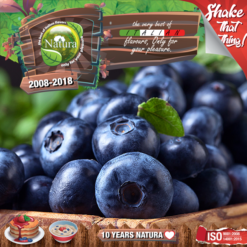Natura Forest Blueberries 100ml (Mix & Shake)