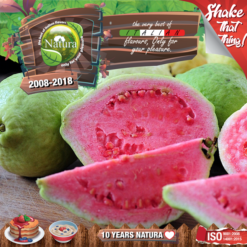 Natura Forest Guavaz 100ml (Mix & Shake)